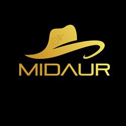 Midaur Logo